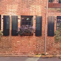 This wonderful wall of colonial era brick is on Elliott Street, just around the corner from Rainbow Row.