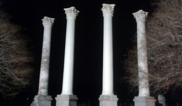 These columns are all that remain of the Charleston Museum, when it located in Cannon Park. The museum was founded in 1773 and is regarded as America's first museum.