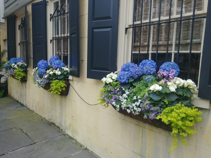 """The house on Legare Street where you can find these beautiful flower boxes was built around 1835. In the 1890's, it was rented byt Capt. Thomas Pinckney. Pinckney was best known for being one of the """"Immortal Six Hundred,"""" who were Confederate officers that were captured and help prisoner during the Civil War. They were intentionally starved and 46 died as a result. They were """"immortalized"""" because they refused to take an oath of allegiance to the United States, despite being put under such duress."""