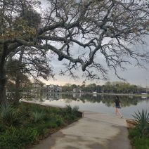 """Early morning along Colonial Lake. The lake is named in honor of the Colonial Commons Act of 1768, which set aside the land for public use. Before its name was officially in 1881, it was simply called the Rutledge Street Pond, or """"The Pond."""" It's a great place for a walk or run... or just to sit and watch the others go by."""