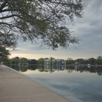 Colonial Lake is a beautiful spot to be in the early morning. The lake is connected to the Ashley River and its levels are generally driven by the tide, but there are now flood controls in place that can manage the water flow.
