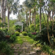 This beautiful Charleston garden on South Battery was designed in the 1920's by the man who literally wrote the book on Charleston gardens in 1951 -- Loutrel Briggs.  (See Charleston Gardens by Loutrel Briggs.)