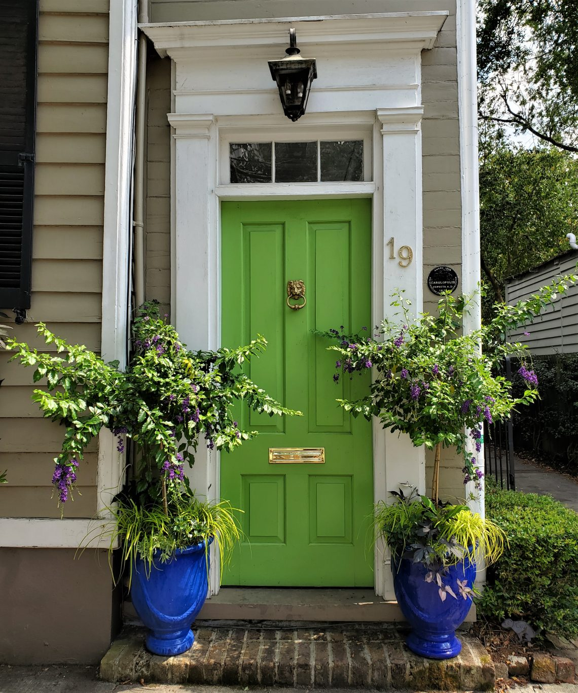 A beautiful Charleston door on Short Street, just a quick stroll to Burbage's or Queen Street Grocery.