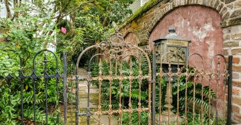 Charleston is full of beautiful little scenes. This cool gate and wall can be found on Bull Street.