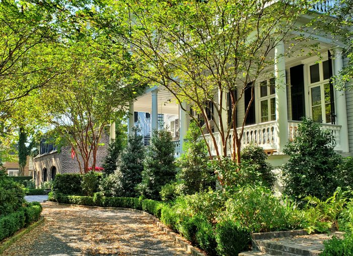A beautiful afternoon scene along Rutledge Avenue in downtown Charleston.