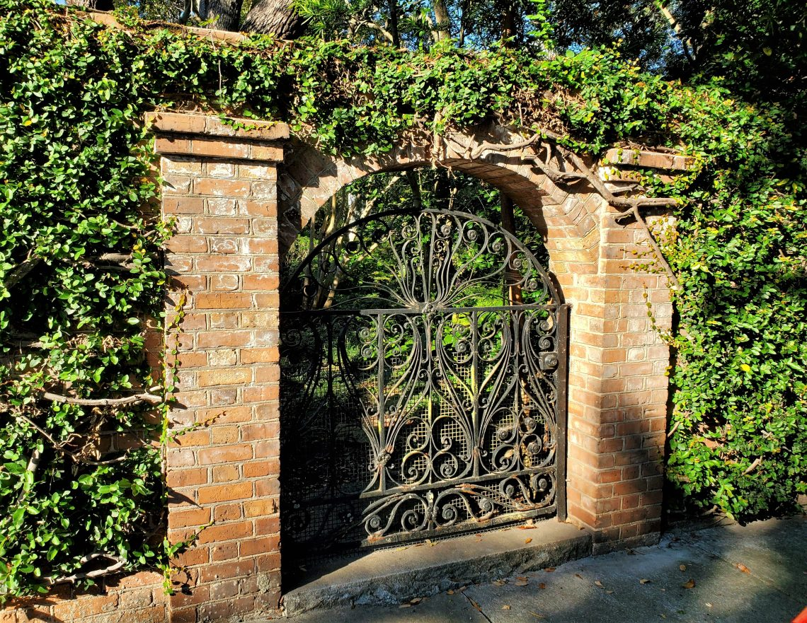 This beautiful gate and wall serve the Parker-Drayton House on Gibbes Street. The owners used to have roosters loose on the property, which accounts for the mesh covering the gate.