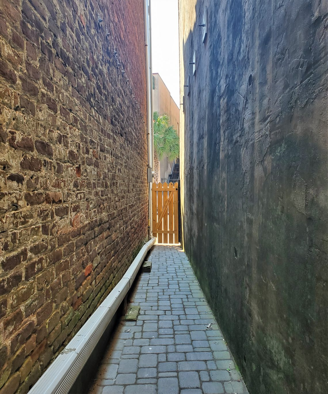 Between downtown buildings you can often find a tight squeeze of an access path. If you exited this one and turned left, you would be walking down King Street -- right past the wonderful old cinema, the American Theater, which was appeared on the other side of the screen in the film The Notebook.