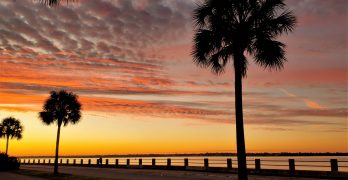 Just before dawn along Murray Boulevard, which is named after a Charleston native who was largely responsible for funding the reclamation and beautification efforts of the area which began in 1909.