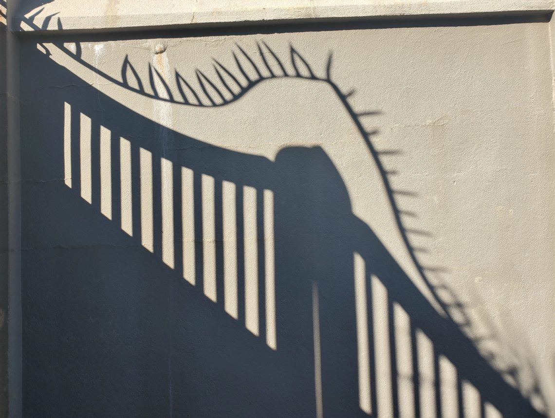 With all the interesting architecture in Charleston, there are many beautiful shadows cast. The gate and protective ironwork casting this shadow are on Orange Street -- guarding the entrance to back drive for the grand Col. John Stuart House (c. 1767-72).