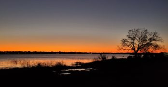 A beautiful sunset across the Ashley River as seen from Brittlebank Park.  A little further up the river is Charles Towne Landing, home to the first English settlement in the Carolinas -- founded 350 years ago. Charles Towne Landing is now a wonderful state park, and well worth the visit.