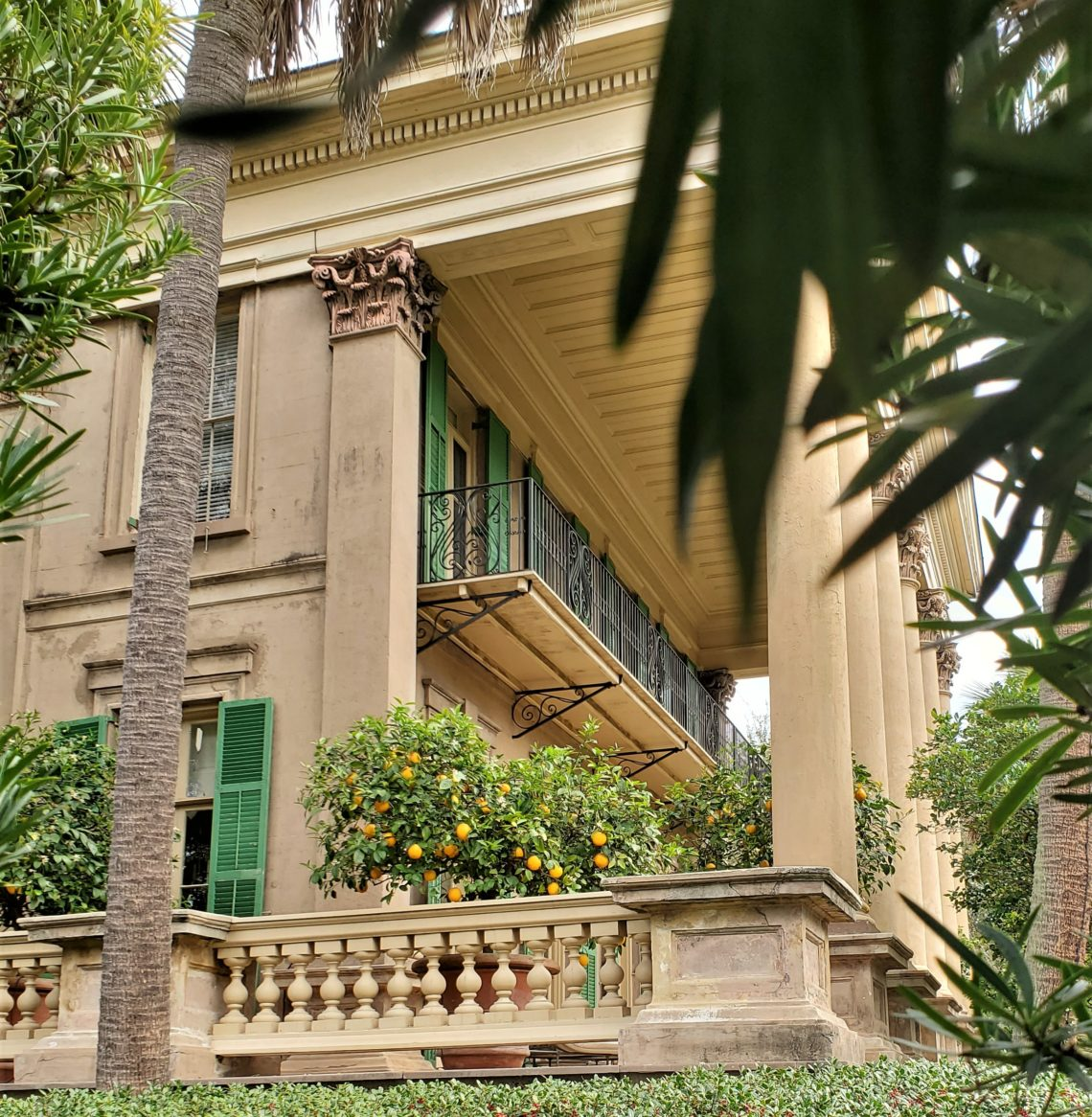 This impressive house (Isaac Jenkins Mikell House, c. 1854) at the corner of Ashley Avenue and Montagu Street was once used as the Charleston library. Now it's the home to one of the Southern Charm reality TV cast members.