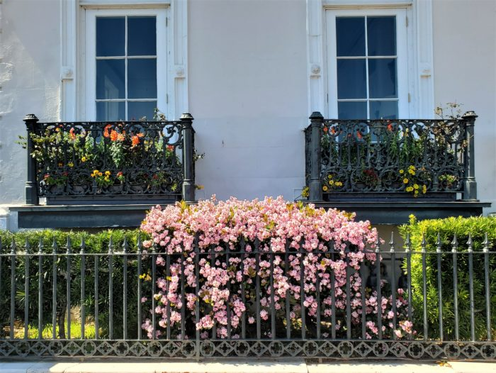 This pretty scene is on the front side of 1 East Battery (c. 1860) -- a grand three story house. The cast iron balconies were added after the Civil War in about 1888. Their view is across the High Battery to the harbor. The grand side piazzas of the house provide a spectacular view of White Point Garden.